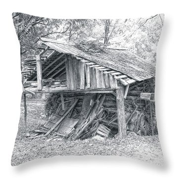 Dilapidated Shed Throw Pillow