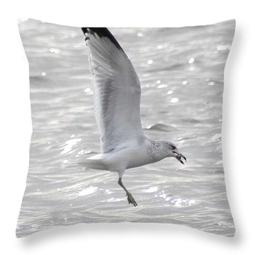 Dining Seagull Throw Pillow