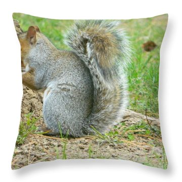 Throw Pillow featuring the photograph Dinner In The Park by Emmy Marie Vickers