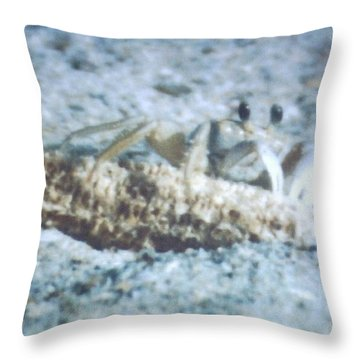 Throw Pillow featuring the photograph Beach Crab Snacking by Belinda Lee