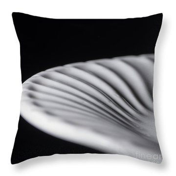 Dinner Plate Throw Pillow