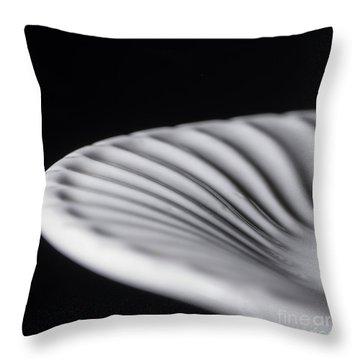 Dinner Plate Throw Pillow by Art Whitton