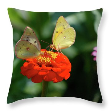 Throw Pillow featuring the photograph Dinner Table For Two Butterflies by Thomas Woolworth