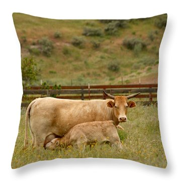 Dinner Time Throw Pillow by Art Block Collections