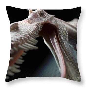 Dinosaur Suchomimus Throw Pillow