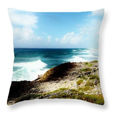 Diorama Throw Pillow by Amar Sheow