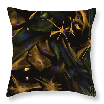 Directed Differentiation Throw Pillow