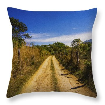 Dirt Road Throw Pillow by Aged Pixel