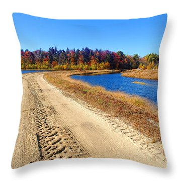 Dirt Road In Marsh Throw Pillow by Olivier Le Queinec