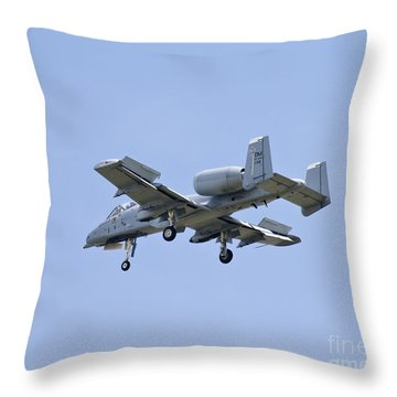Dirty Hawg Throw Pillow by Tim Mulina