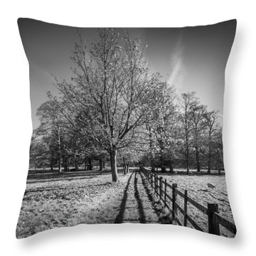 Disappearing Fence Throw Pillow