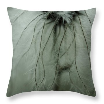 Discarded Dreams Throw Pillow by Shane Holsclaw