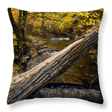 Discover Our Strengths Throw Pillow