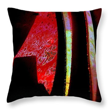 Discover Throw Pillow by Shirley Sirois