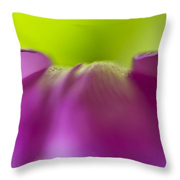 Discovery In Color Throw Pillow