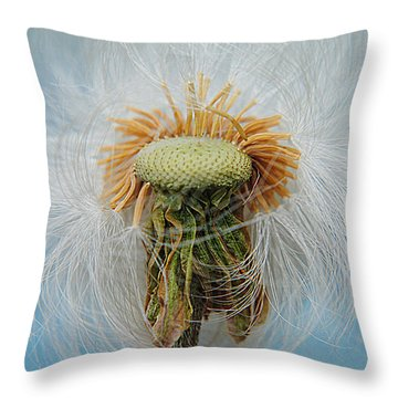 Disheveled Throw Pillow by Frozen in Time Fine Art Photography