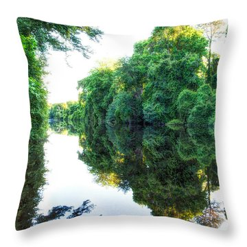 Dismal Swamp Canal Throw Pillow by David Cote