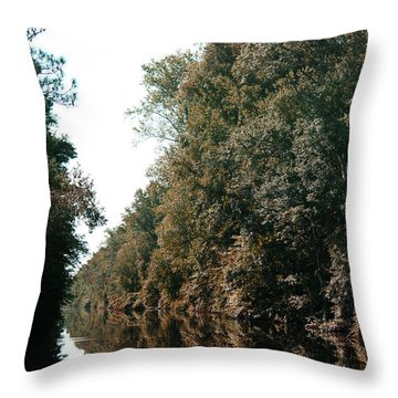 Dismal Swamp Canal Throw Pillow by Rebecca Davis