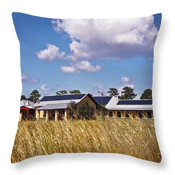 Disney Wilderness Preserve Throw Pillow by Rich Franco