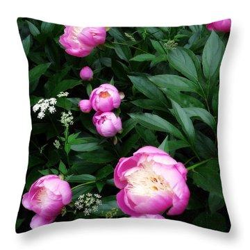 Display Of Romance Throw Pillow by Deborah  Crew-Johnson