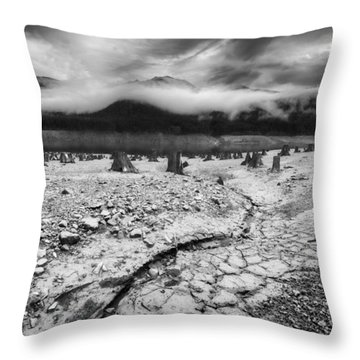 Dissapearing Water Throw Pillow