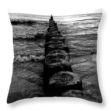 Distant Seagull Baltic Beach Throw Pillow