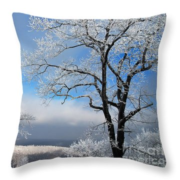 Distant Storms Throw Pillow by Lois Bryan