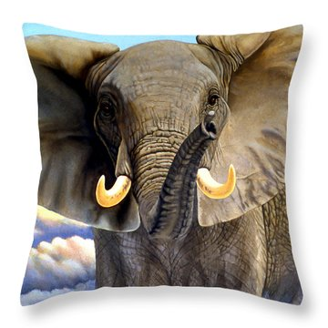Da108 Distant Thunder By Daniel Adams Throw Pillow