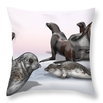 Distinguishing Marks - Eared Seals Otariidae And Earless Seals Phocidae - Zoo Interpretiation Panels Throw Pillow