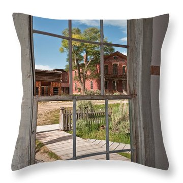 Distorted View Of The World Throw Pillow by Sue Smith