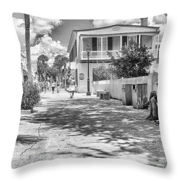 Throw Pillow featuring the photograph Distraction by Howard Salmon