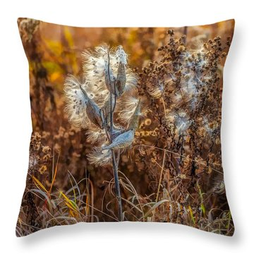 Ditch Beauty Throw Pillow by Steve Harrington