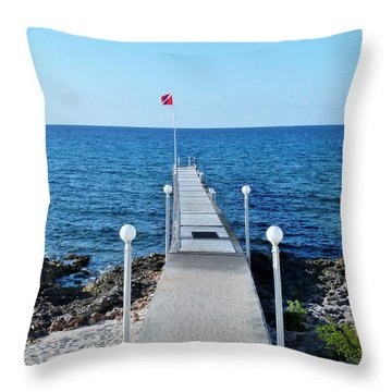 Throw Pillow featuring the photograph Divers Down by Amar Sheow