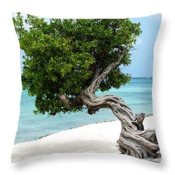 Divi Divi Tree In Aruba Throw Pillow