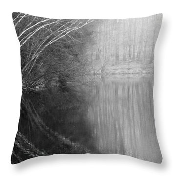 Divided By Nature Bw Throw Pillow by Karol Livote
