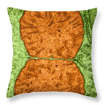 Dividing Mitochondrion Tem Throw Pillow by Don W Fawcett