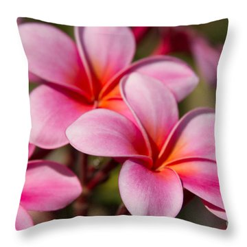 Divine Joy Throw Pillow by Sharon Mau