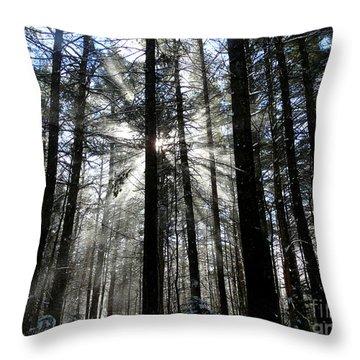 Divine Light Throw Pillow by Avis  Noelle