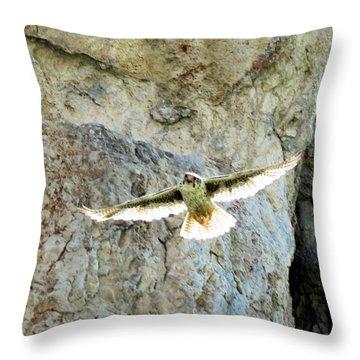 Diving Falcon Throw Pillow