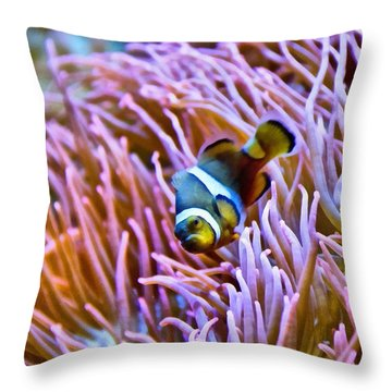 Do I Look Like A Clown To You Throw Pillow by Angelina Vick