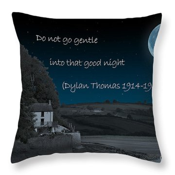 Do Not Go Gentle Throw Pillow by Steve Purnell