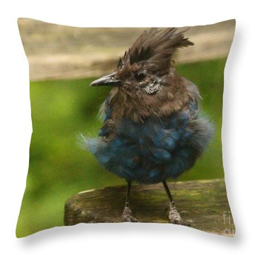 Do You Like My New Dress? Throw Pillow by Kym Backland