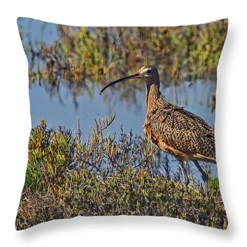 Throw Pillow featuring the photograph Do You Like My Stylish Beak by Gary Holmes