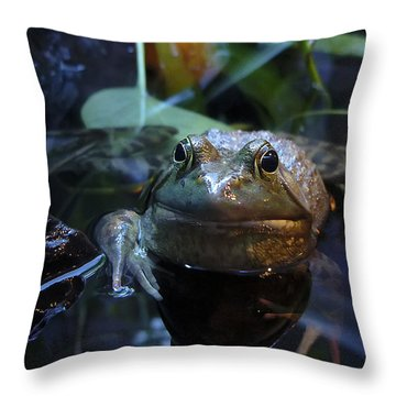 Do You See Beauty Throw Pillow