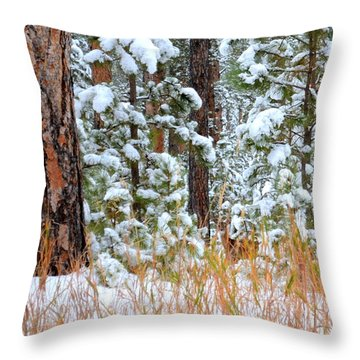 Throw Pillow featuring the photograph Do You See Me by Clarice  Lakota