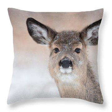 Doe In The Sno Throw Pillow