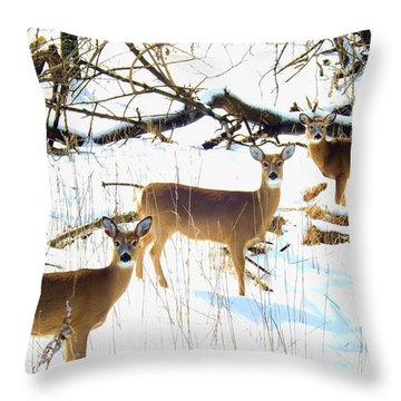 Does In The Snow Throw Pillow