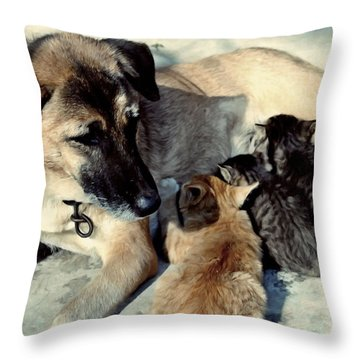 Dog Adopts Kittens Throw Pillow by Lanjee Chee