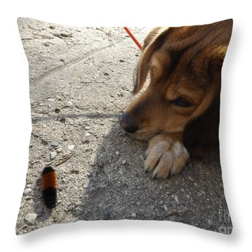Dog And Friend Throw Pillow by Erick Schmidt