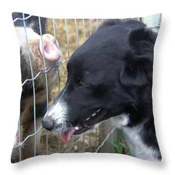 Dog And Pigs Throw Pillow by Kathy Bassett